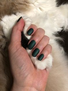 I got this beautiful shade and had no clue it was matte! Unwilling kitty paw paw as my background. : RedditLaqueristas
