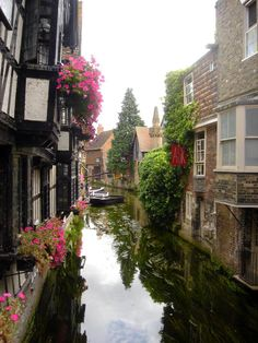 The river Stour at Canterbury, Kent, England.