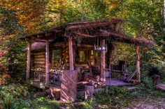 Little Log Cabin in the Woods, Adirondacks