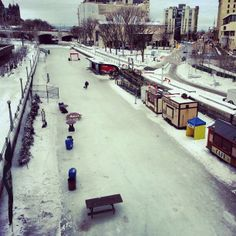 """See 540 photos and 46 tips from 2888 visitors to Rideau Canal. """"The highlight of the city! Time Of The Year, Wander, Street View, Lost, City, Curtains, City Drawing, Cities"""