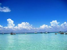crab island, the life I could live everyday...