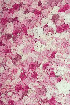 Pink, Hot Pink, Creme Flowers