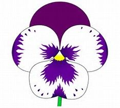 Image result for Pansy Flower Drawing Simple