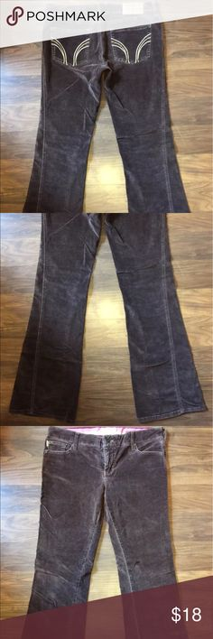 Hollister Velvet Retro Low Rise Stretch Flare Jean Great condition no flaws Hollister Jeans Flare & Wide Leg