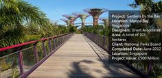 Gardens by the Bay Has Changed the way we Look at Landscape Architecture Forever