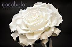 拼接捧花│MELIA BOUQUET-PURE LOVE  拼接式的美莉亞捧花是以厄瓜多所產的頂級玫瑰 所製成的恆星花, 此作品是將三朵大型玫瑰拆瓣後再一瓣一瓣地重新組合成華麗浪漫的單朵玫瑰花, 第一次見到總是驚艷不已!  象徵神聖純潔的白色在黑暗中更顯其高雅大方, 而拼接製作過程所需的耐心與細心, 不也如婚姻生活般需要細心呵護、用心經營?  『純潔的愛』(Pure Love), 始於淨白,成於婚姻之路的美好旖旎...   Tips:拼接式婚禮捧花接受跟我們一樣有耐心的你訂製,                顏色繽紛多款,隨興隨喜隨你選擇。