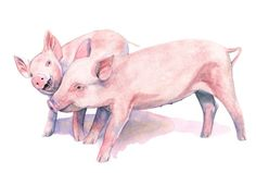 Piglet print of watercolour painting A3 size от LouiseDeMasi