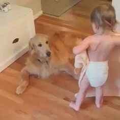 TODDLER TUCKS IN THE DOG FOR THE NIGHT
