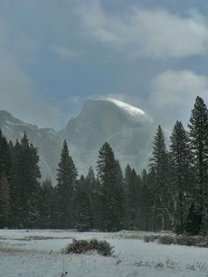 Join the Ranger Walk - December 2013 (Photo via Yosemite National Park) Yosemite National Park, National Parks, Yosemite Winter, Mammoth Mountain, Holidays And Events, Winter Wonderland, Places To See, Cool Photos, To Go