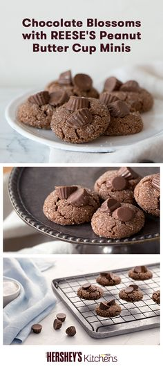 This Chocolate Blossoms with REESE'S Peanut Butter Cup Minis recipe is going to shake up the cookie tin this holiday season. This fun and easy recipe is made with REESE'S Creamy Peanut Butter, HERSHEY'S Cocoa, and REESE'S Peanut Butter Cups Minis to creat Peanut Butter Blossom Cookies, Chocolate Peanut Butter Cookies, Reeses Peanut Butter, Peanut Butter Recipes, Chocolate Recipes, Homemade Desserts, Delicious Desserts, Dessert Recipes, Cookie Recipes