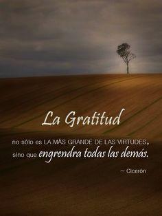 """""""La gratitud no sólo es la más grande de las virtudes, sino que engendra todas las demás."""" ~ Cicerón"""