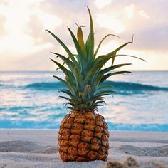 Image via We Heart It #paradise #perfect #pineapple #sea #summer #sun