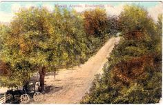 Brooksville Howell Avenue by ghs1922, via Flickr