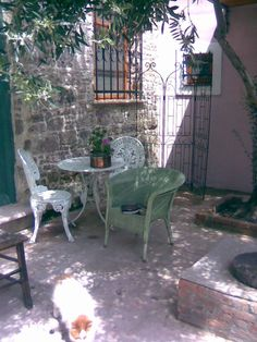 chair, book, olive tree