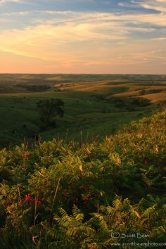 Flint Hills.  Photo by Scott Bean.