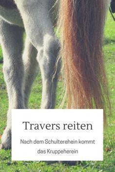 Travers, Renvers und Kruppeherein reiten