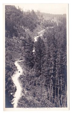 BC – MALAHAT, Malahat Drive Looking North, Trio c.1910s RPPC West Coast Canada, Fraser Valley, Canadian History, Vancouver Island, History Facts, Old Pictures, Historical Photos, British Columbia, Disneyland