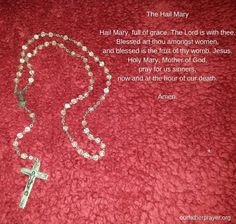 The Hail Mary - Hail Mary, full of grace. The Lord is with thee. Blessed art thou amongst women, and blessed is the fruit of thy womb, Jesus. God Jesus, Jesus Christ, Our Father Prayer, Prayer For Guidance, Everyday Prayers, Holy Mary, Art Thou, Pray For Us, Jesus Saves