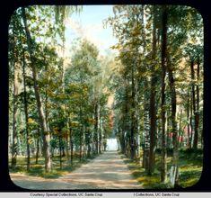 Россия, Петергоф. Фото: Бренсон ДеКу, 1931 г.