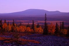 Autumn in Lapland photo credit: Finnish Lapland Film Commission Lapland Finland, Lappland, City Landscape, Earth Tones, Nature Photography, Villa, Around The Worlds, Places, Pictures