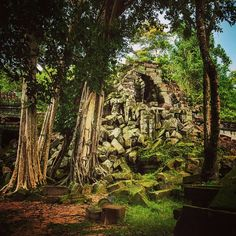 After spending the morning chasing waterfalls on Cambodia's most sacred mountain, it was only fitting to end up at a temple never restored and still a part of the jungle. In fact the area was only cleared of land mines about 5 years ago, so it was advised to not venture too far off the path. Authentic Cambodia. #Indianajones #Jungletemple #traveler