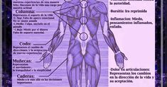 """Contenido sobre osteopatia, flores de Bach, acupuntura, terapia neural, medicina alternativa natural y complementaria, en Concordia Argentina"" Reiki, Health Fitness, Healing, Education, Oriental, Natural, Emotional Development, Therapy, Varicose Veins"