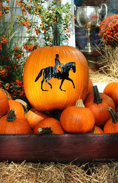 Fall equestrian pumpkin display