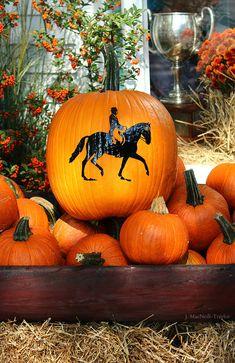 Fall equestrian pumpkin display