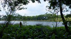 de #Vennekampen #TerBorg #Westerwolde wat een pracht natuurgebied.