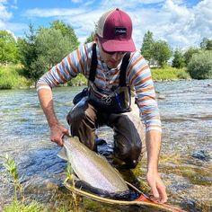 Rainbow fatty! Born & raised in Slovenia!  #rainbowtrout #forelle #trout #slovenia #fishingmakesyouhappy #fliegenfischen #catchandrelease #itonlycountsonthefly #flytying #aosfishing #fishing #fischen #flyfishing #fluefiske #fluefiskeri #perhokalastus #vliegvissen #tightlines #pescaconmosca #pechemouche #graz #austria #angeln #keepemwet #keepemwetfishing #keepfishwet #flyfishingaddict #SEEWHATSOUTTHERE @orvisuk @aosfishing @orvisflyfishing @loop_tackle @simmsfishing @guidelineflyfish @rioproducts Graz Austria, Rainbow Trout, Slovenia, Fly Fishing, Action, Instagram, Fishing, Group Action, Fly Tying