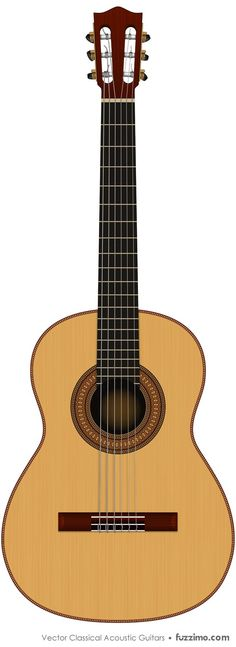 Free Vector Classical Acoustic Guitars   fuzzimo