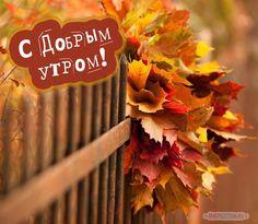Осенние картинки с добрым утром: красивые и прикольные Happy Monday Morning, Good Morning, Happy Wishes, Art Projects, Positivity, Pictures, Painting, Love, Buen Dia