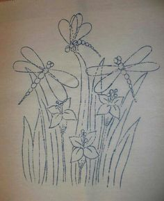 Dragonfly  caballitos del  diablo