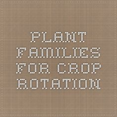 Plant Families for Crop Rotation