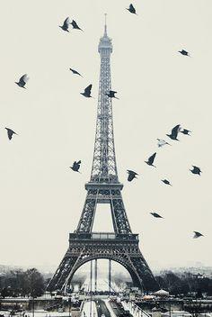 Les plus belles photos de la Tour Eiffel