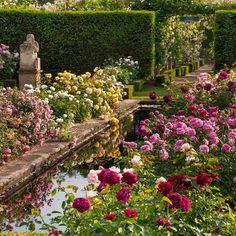 The Secret Garden of My Soul Roses David Austin, David Austin Rosen, Gray Garden, Formal Garden Design, The Secret Garden, Nature Aesthetic, Aesthetic Roses, Photos Voyages, Garden Styles