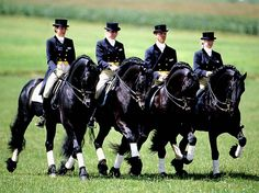Friesian - Baroque Horse Magazine http://www.equipotelex.com/en-vivo-telexfree/ #1-sign-up at http://telexfree.com/atlantis #2-Download APP at Google Play or APP Store