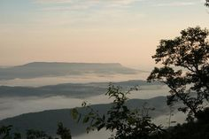 Mentone, why visit? - TripAdvisor - Travel & Tourism for Mentone, AL