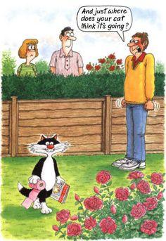 Cartoon funny