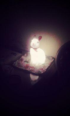 토끼 램프 Woodland Rabbit Night Light #bunnyinabow
