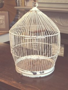 A vintage 1950's/60's cream birdcage, removal base could be good to put a plant or candle in. Picked this up at a vintage fair and love the genuine shabby chic appearance