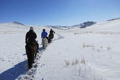 Rando à cheval en Mongolie dans la neige en hiver - http://www.rando-cheval-mongolie.com/voyages/randonnees-cheval/randonnee-cheval-orkhon-hiver.html