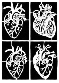 My soon to be job!!! Cardiology!!