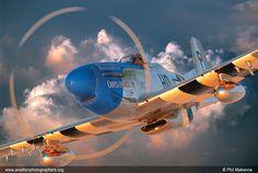 P-51D Mustang Fighter