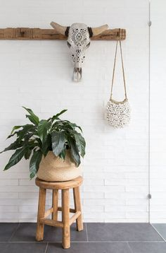 Bathroom Details at The Grove Byron Bay. A timber stool, hanging shell bag, carved skull and indoor plant. Decor, Cottage Style, Bathroom Wallpaper, Decorating Help, House Styles, Beach Cottage Style, Bathroom Plants, Bathroom Decor, Indoor Plants