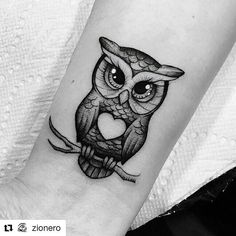 Pin by danielle zack on tattoos eulen tattoo, motten tattoo, Baby Owl Tattoos, Cute Owl Tattoo, Owl Tattoo Small, Girl Tattoos, Tattoos For Guys, Tattoo Owl, Realistic Owl Tattoo, Hawk Tattoo, Leg Tattoos Women