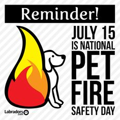 Fire prevention [ shop.coldfiresoutheast.com ] #firesafety Dog Safety, Fire Safety, National Preparedness Month, Family Emergency, Fire Prevention, Labradors, How To Get, How To Plan, Natural Disasters