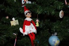 The Elf on the Shelf : Doe sitting in the tree with Dopey