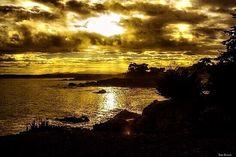 'Golden Skies' -