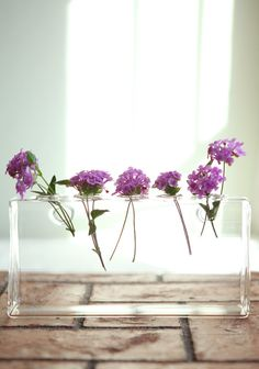 """Hudson 5-hole Wall Vase By Chive 29.99 at shopruche.com. Like flowers gliding on air, this glass five hole vase is finished with two holes on the back for easy hanging., ,  Approx. 8""""L x 2""""W x 4""""H"""
